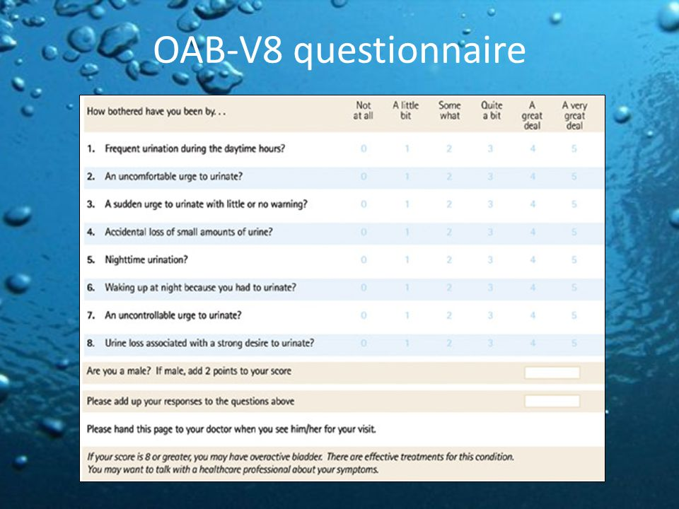 OAB-V8 questionnaire