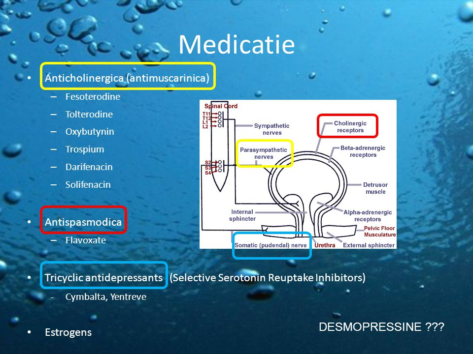 Medicatie Anticholinergica (antimuscarinica) Antispasmodica