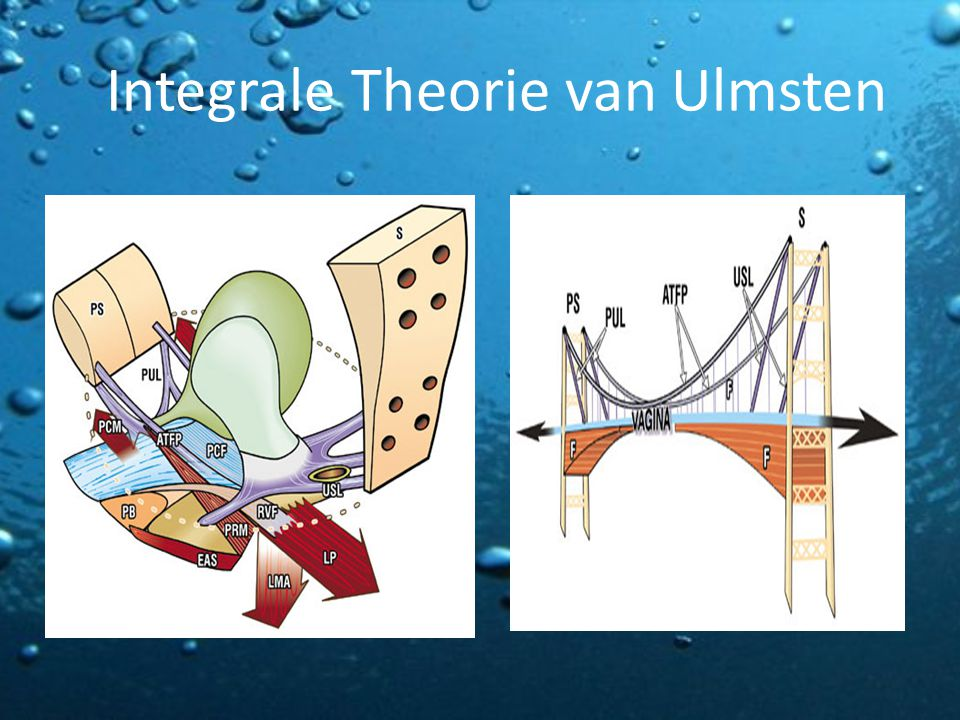 Integrale Theorie van Ulmsten