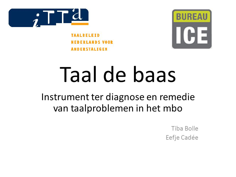 Instrument ter diagnose en remedie van taalproblemen in het mbo