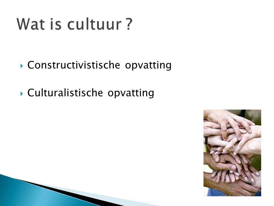 Wat is cultuur Constructivistische opvatting