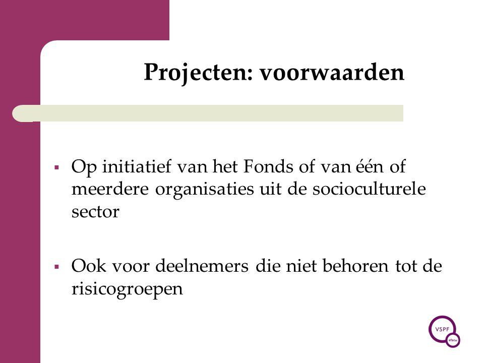 Projecten: voorwaarden