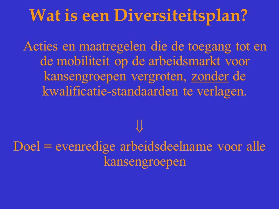 Wat is een Diversiteitsplan