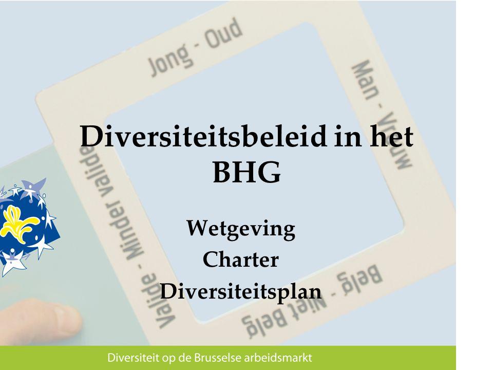 Diversiteitsbeleid in het BHG