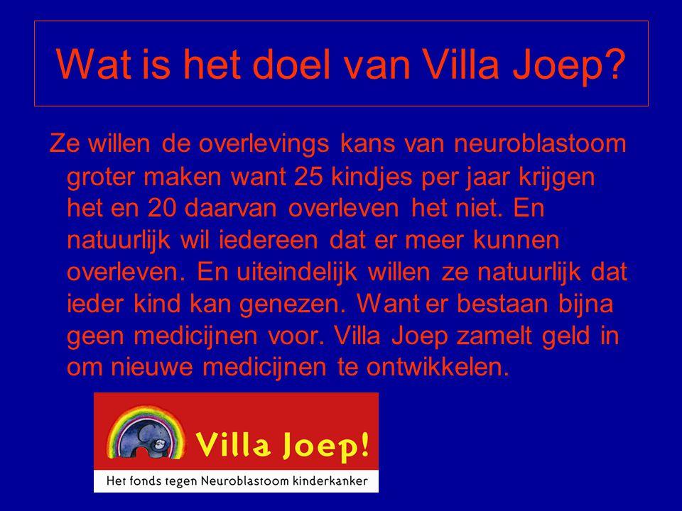 Wat is het doel van Villa Joep
