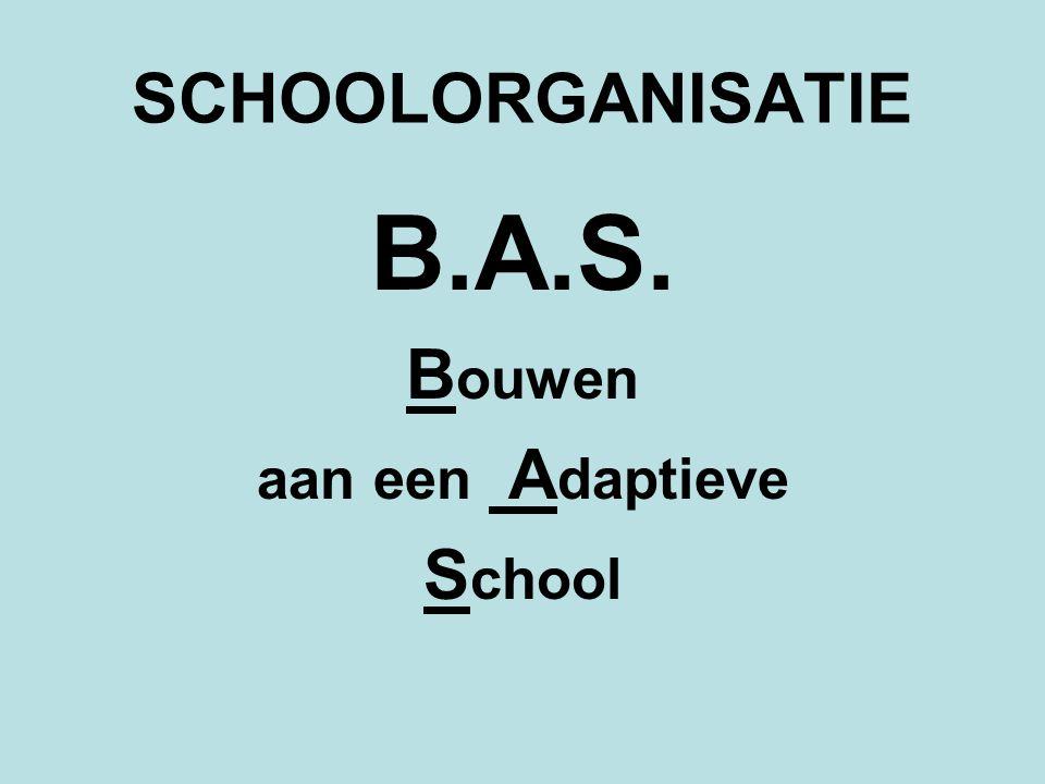 SCHOOLORGANISATIE B.A.S. Bouwen aan een Adaptieve School