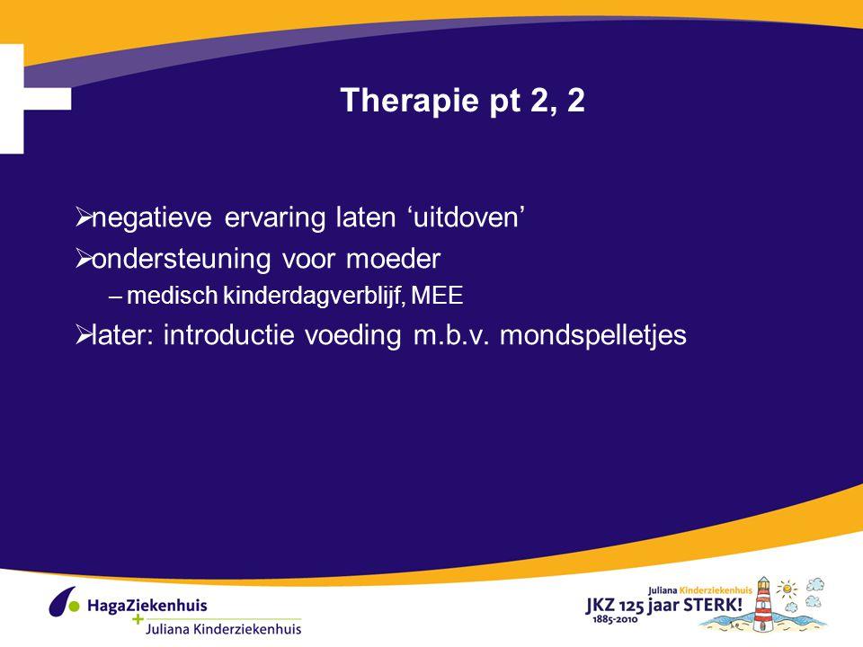 Therapie pt 2, 2 negatieve ervaring laten 'uitdoven'
