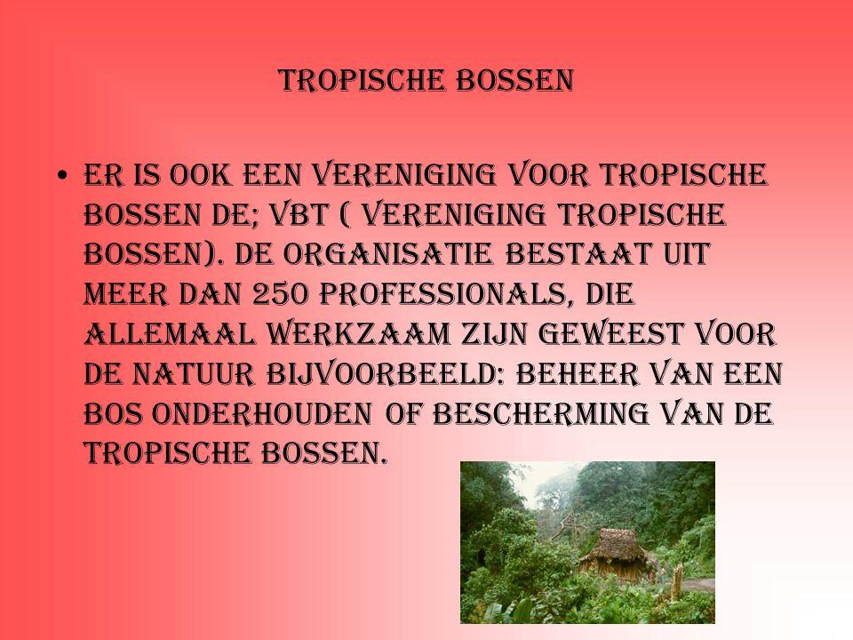 Tropische bossen