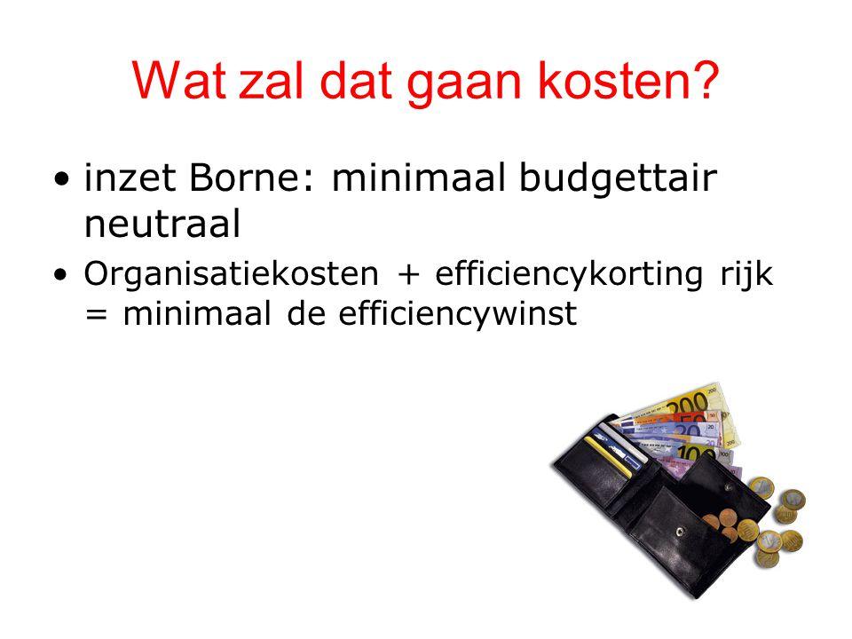 Wat zal dat gaan kosten inzet Borne: minimaal budgettair neutraal