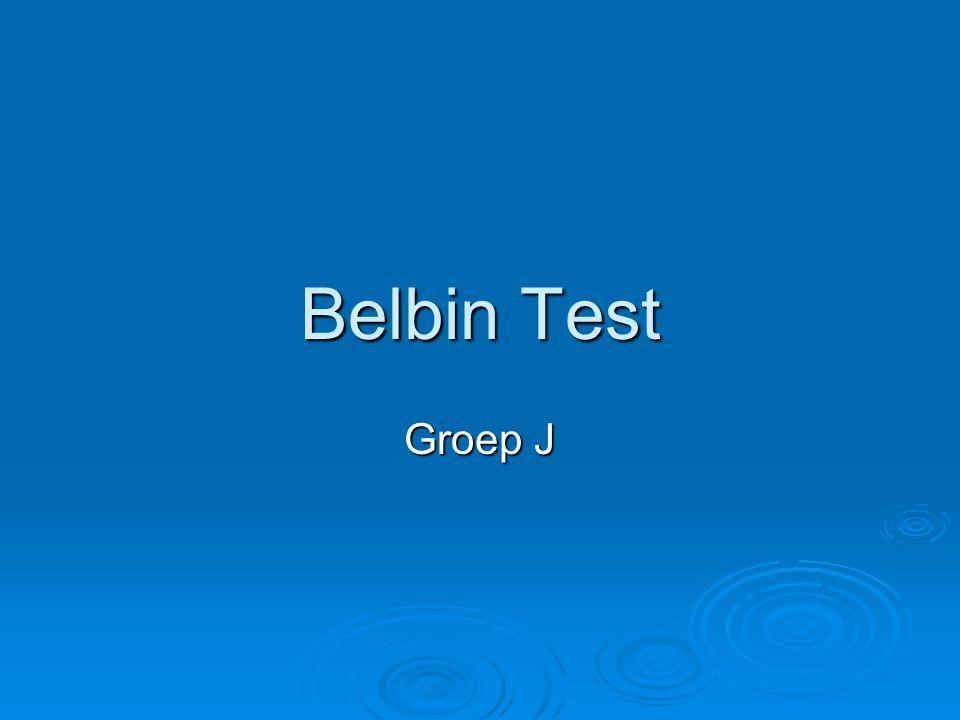 Belbin Test Groep J