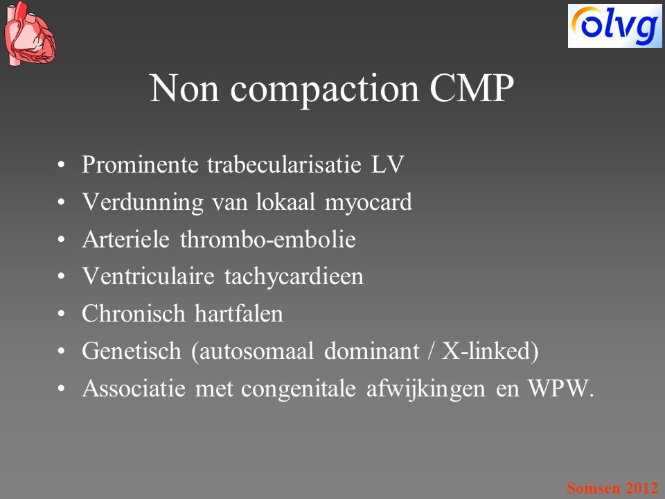 Non compaction CMP Prominente trabecularisatie LV