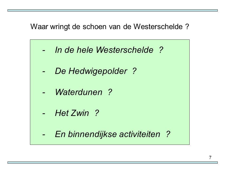 - In de hele Westerschelde - De Hedwigepolder - Waterdunen