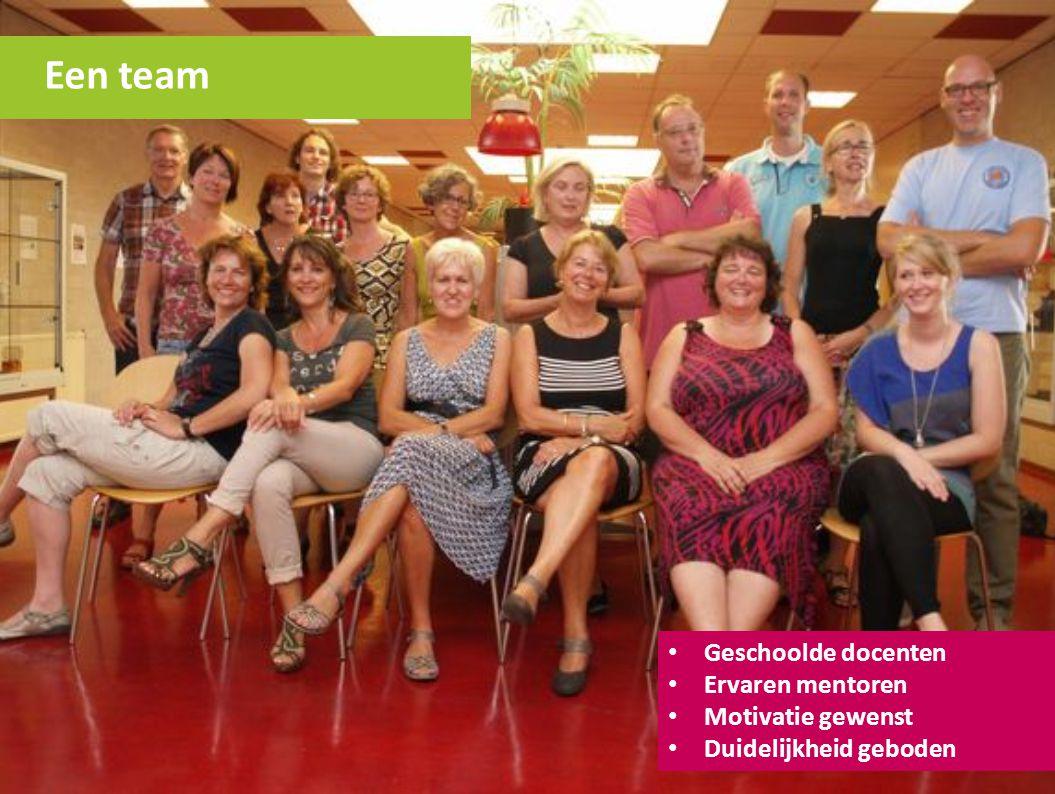 Een team Geschoolde docenten Ervaren mentoren Motivatie gewenst