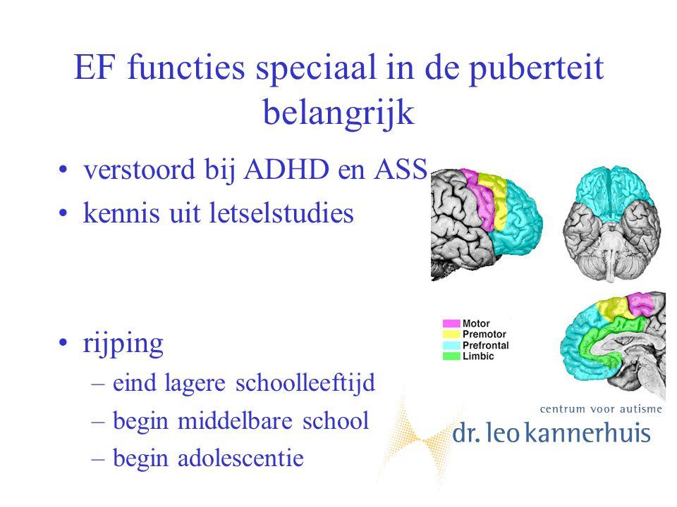EF functies speciaal in de puberteit belangrijk