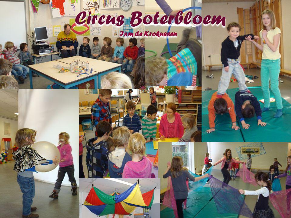 Circus Boterbloem Ism de Krokussen