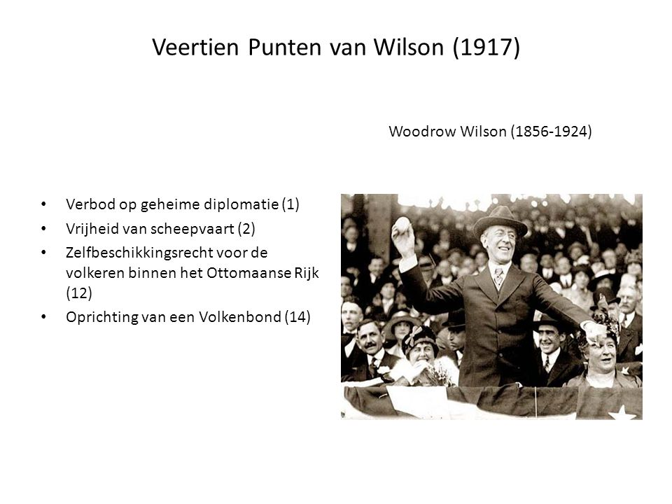 Veertien Punten van Wilson (1917)