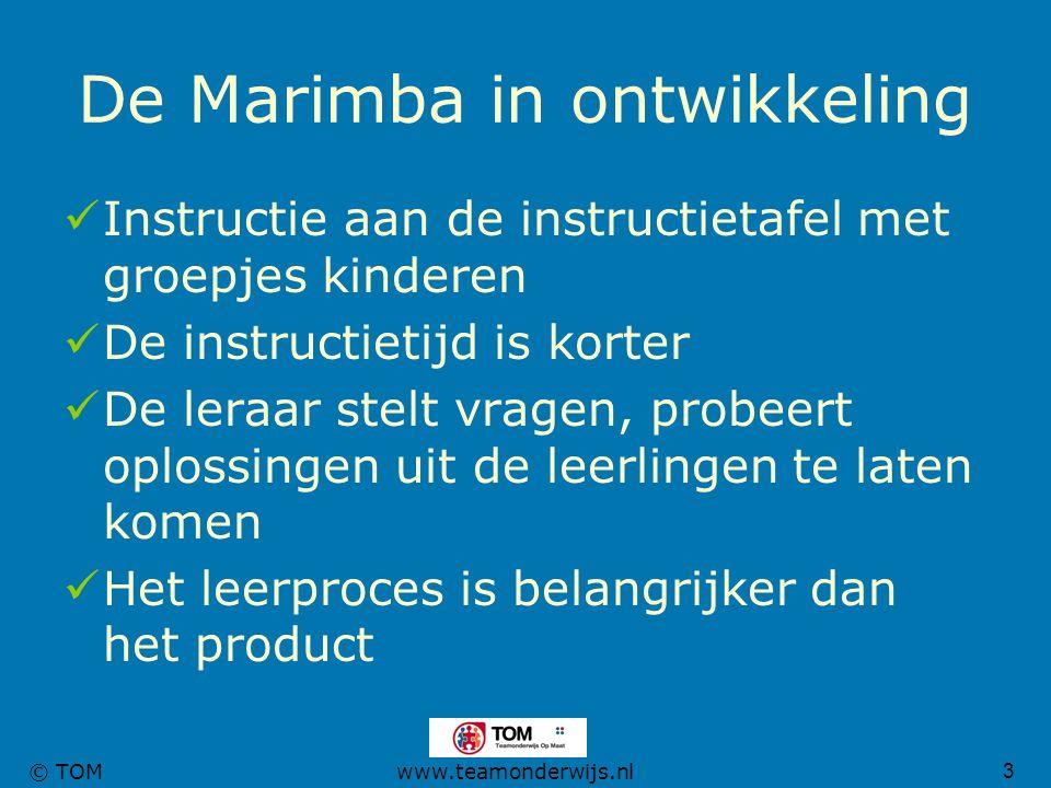 De Marimba in ontwikkeling