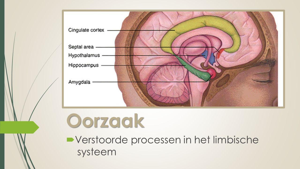 Oorzaak Verstoorde processen in het limbische systeem
