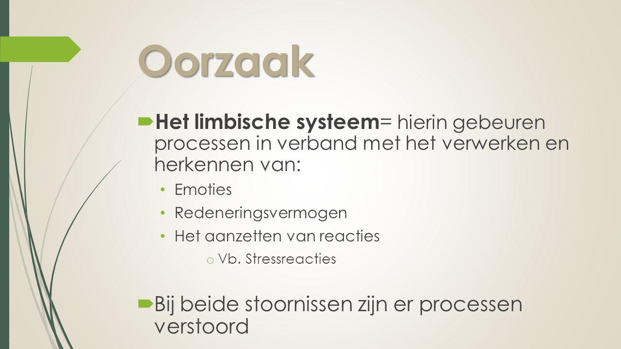 Oorzaak Het limbische systeem= hierin gebeuren processen in verband met het verwerken en herkennen van:
