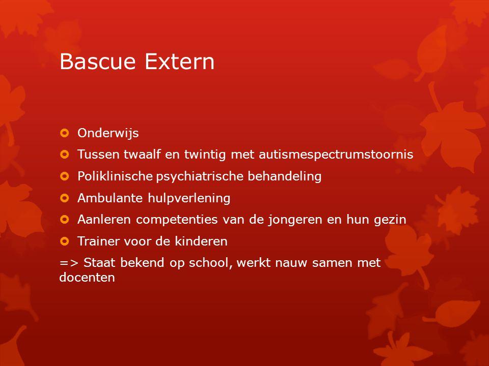 Bascue Extern Onderwijs