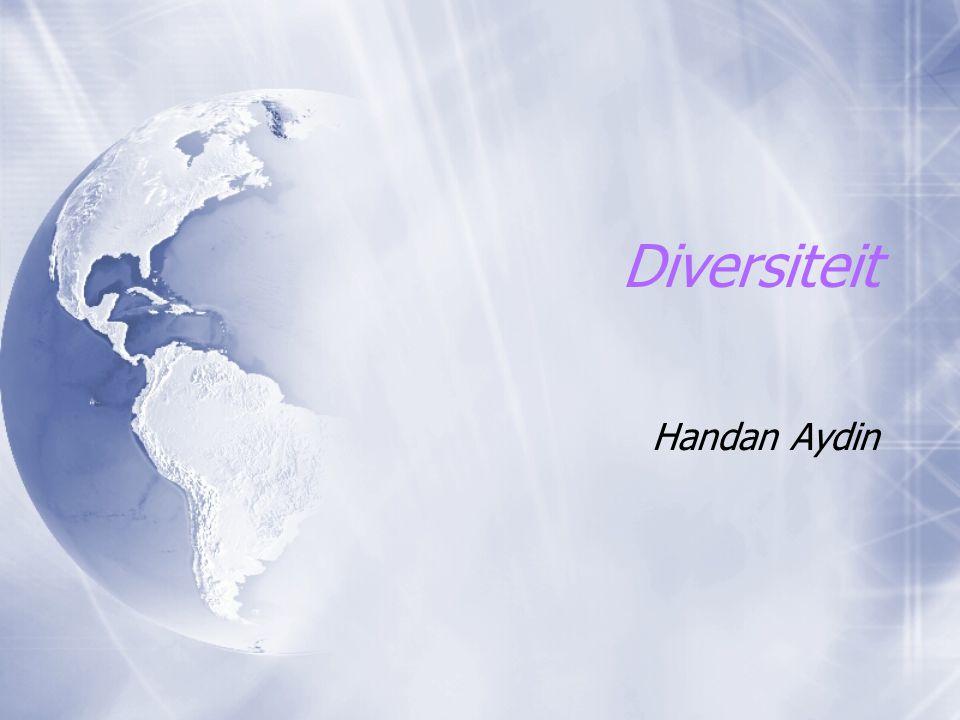 Diversiteit Handan Aydin
