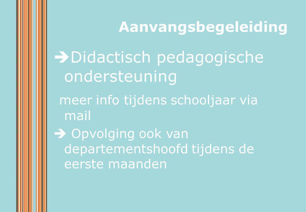 Didactisch pedagogische ondersteuning