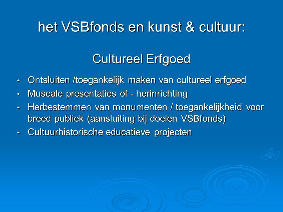 het VSBfonds en kunst & cultuur: