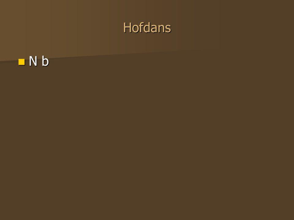 Hofdans N b