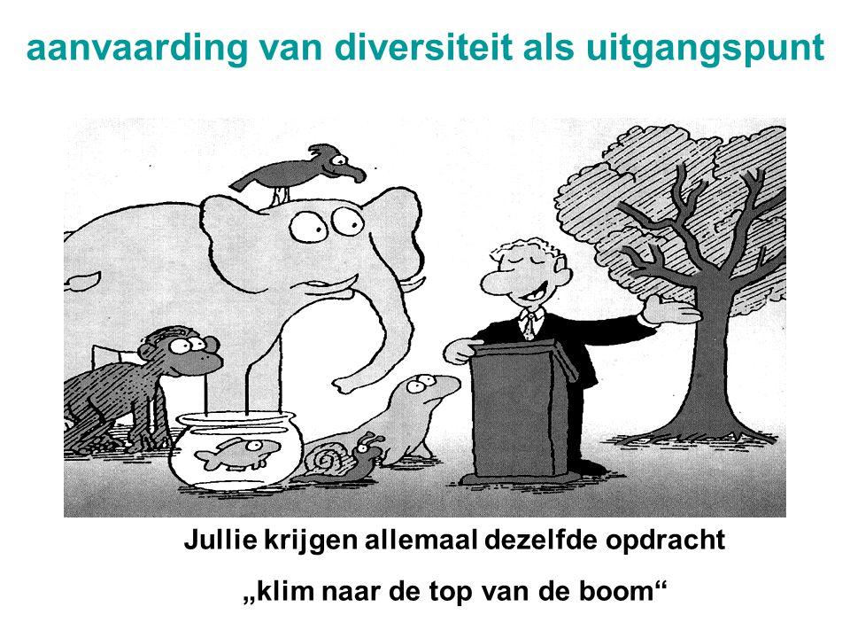 aanvaarding van diversiteit als uitgangspunt