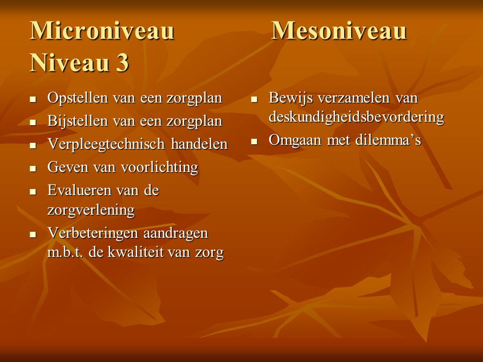 Microniveau Mesoniveau Niveau 3