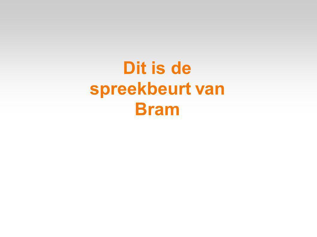 Dit is de spreekbeurt van Bram