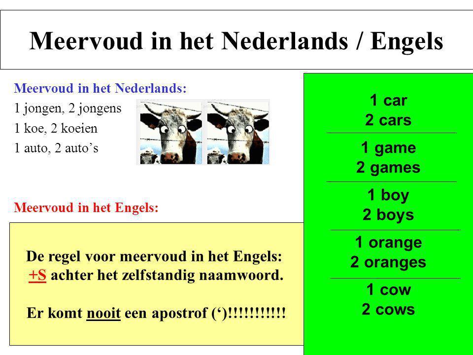 Meervoud in het Nederlands / Engels