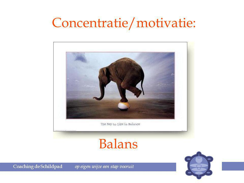Concentratie/motivatie: