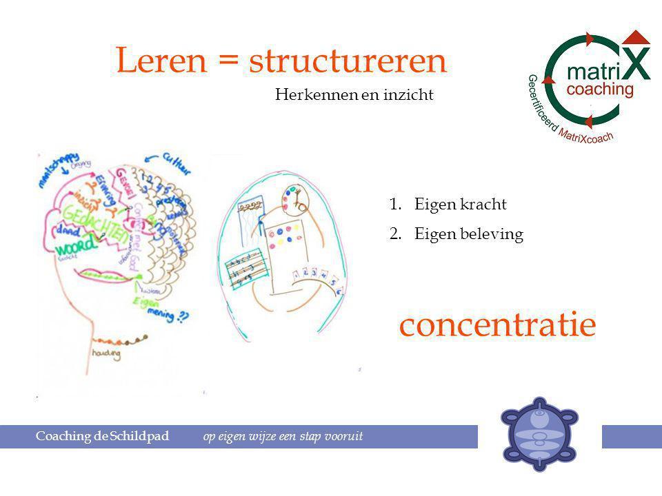 Leren = structureren concentratie Herkennen en inzicht Eigen kracht