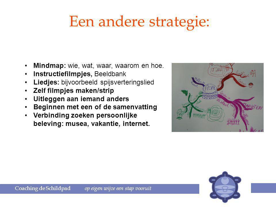 Een andere strategie: Mindmap: wie, wat, waar, waarom en hoe.