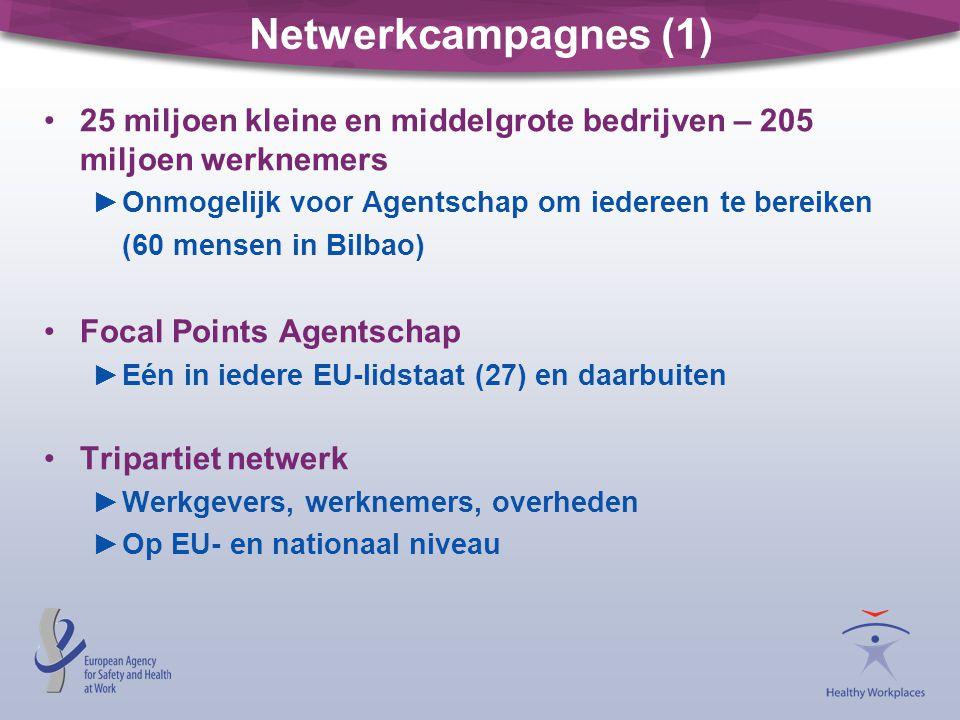Netwerkcampagnes (1) 25 miljoen kleine en middelgrote bedrijven – 205 miljoen werknemers. Onmogelijk voor Agentschap om iedereen te bereiken.
