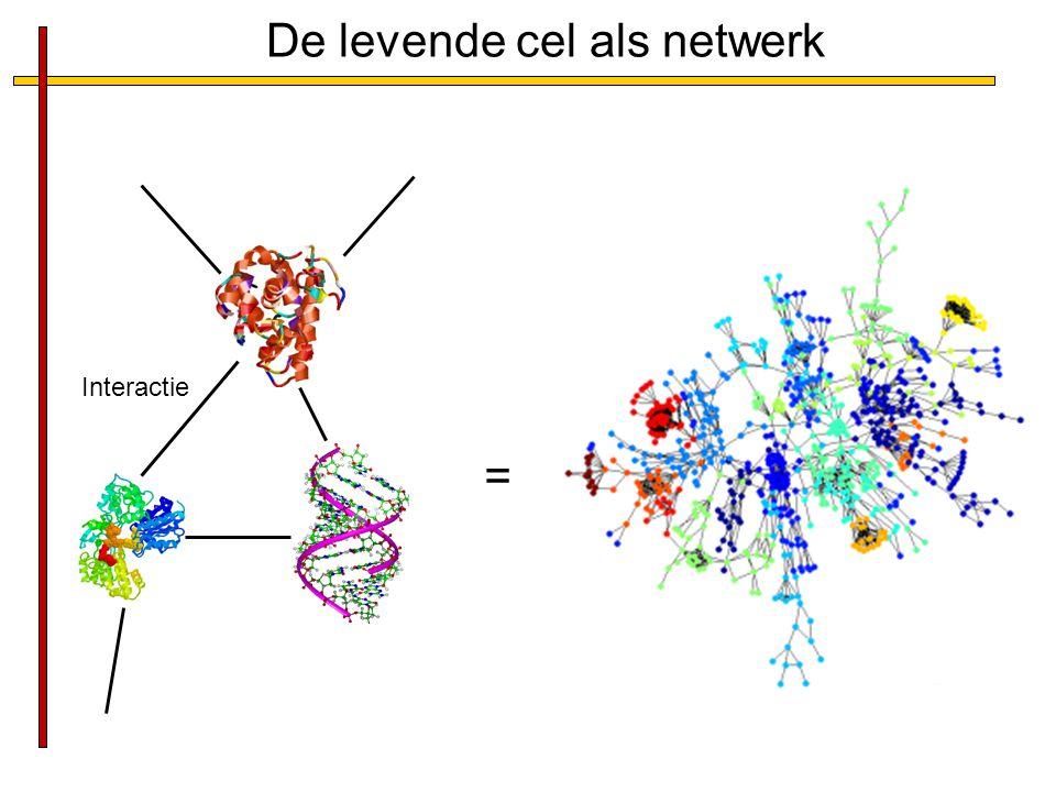 De levende cel als netwerk