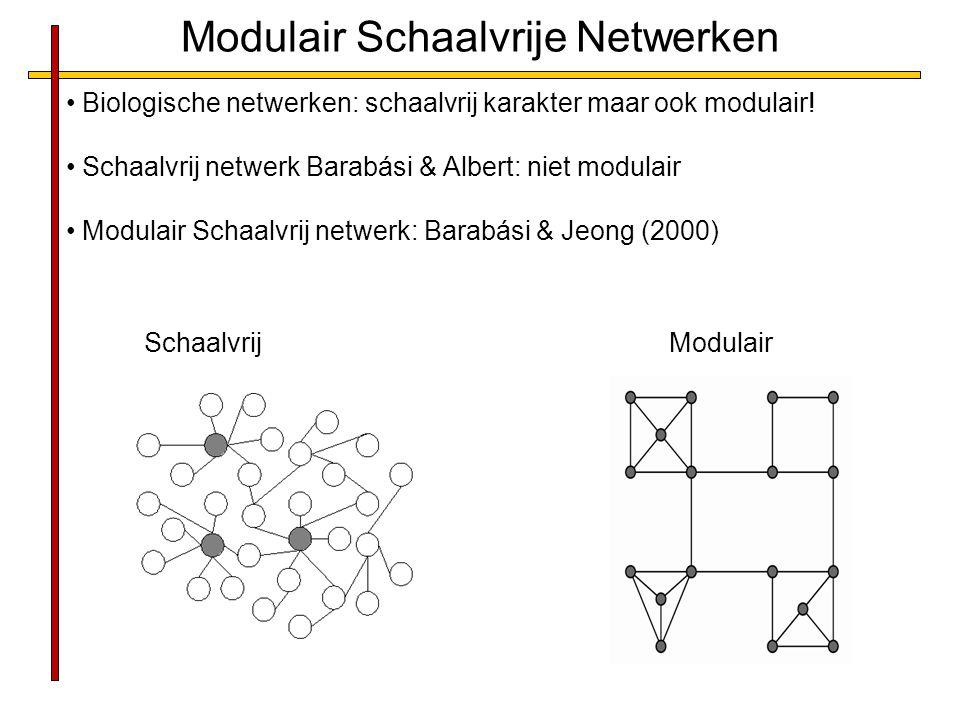Modulair Schaalvrije Netwerken