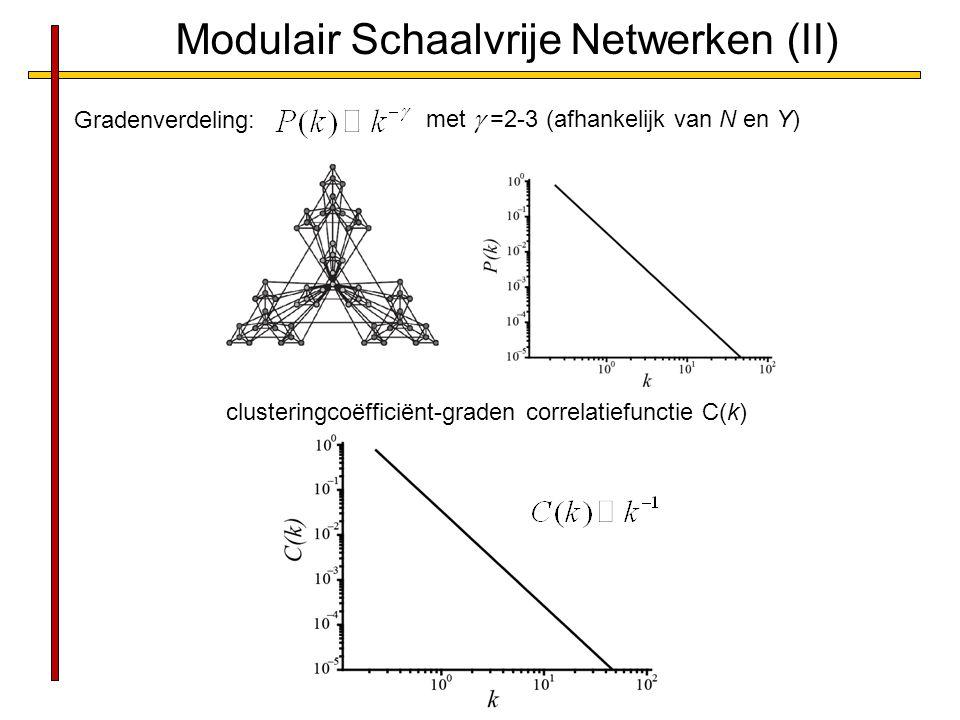 Modulair Schaalvrije Netwerken (II)