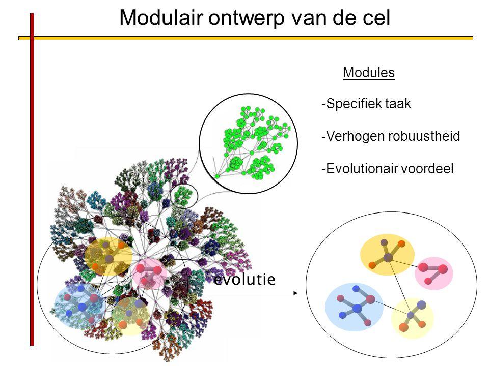 Modulair ontwerp van de cel