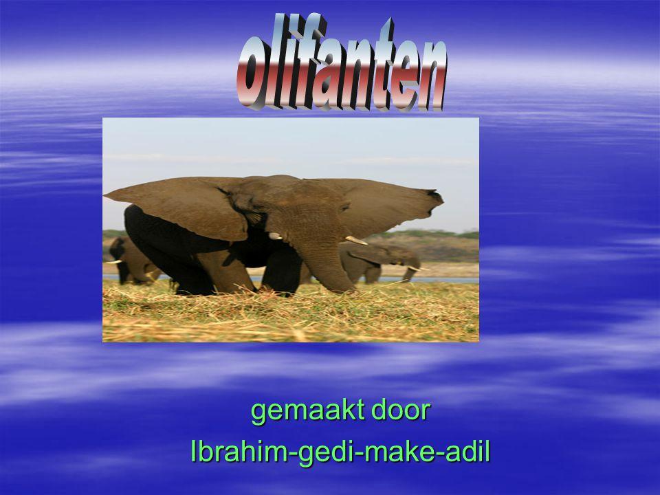 gemaakt door Ibrahim-gedi-make-adil