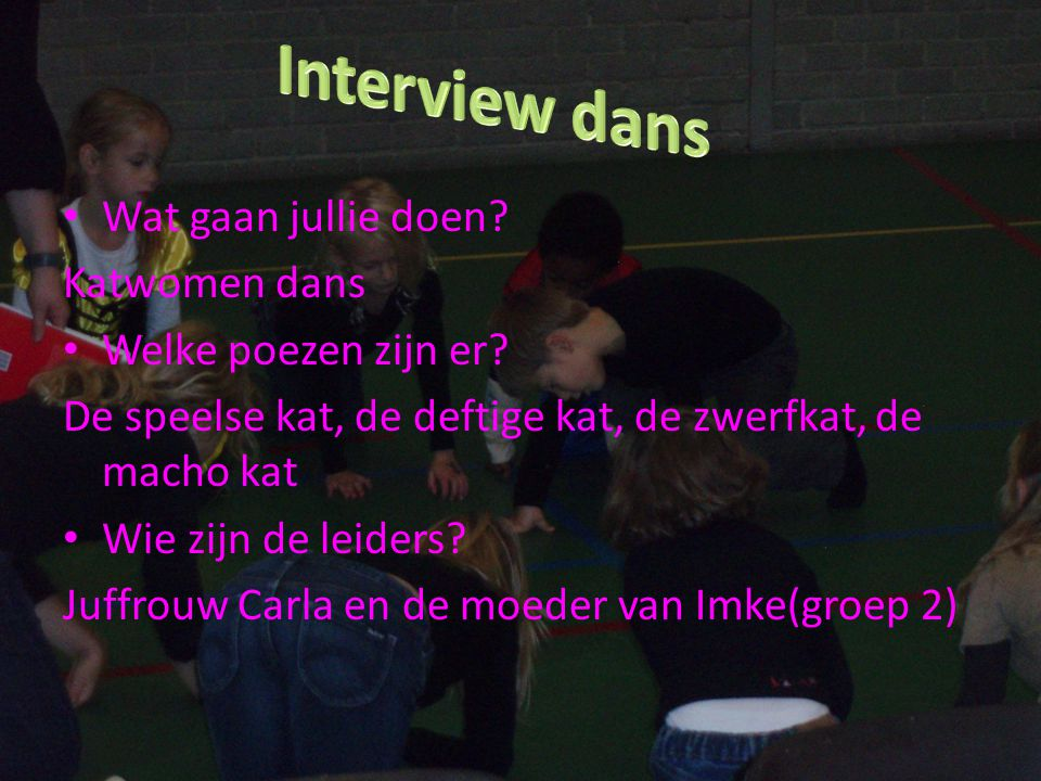 Interview dans Wat gaan jullie doen Katwomen dans