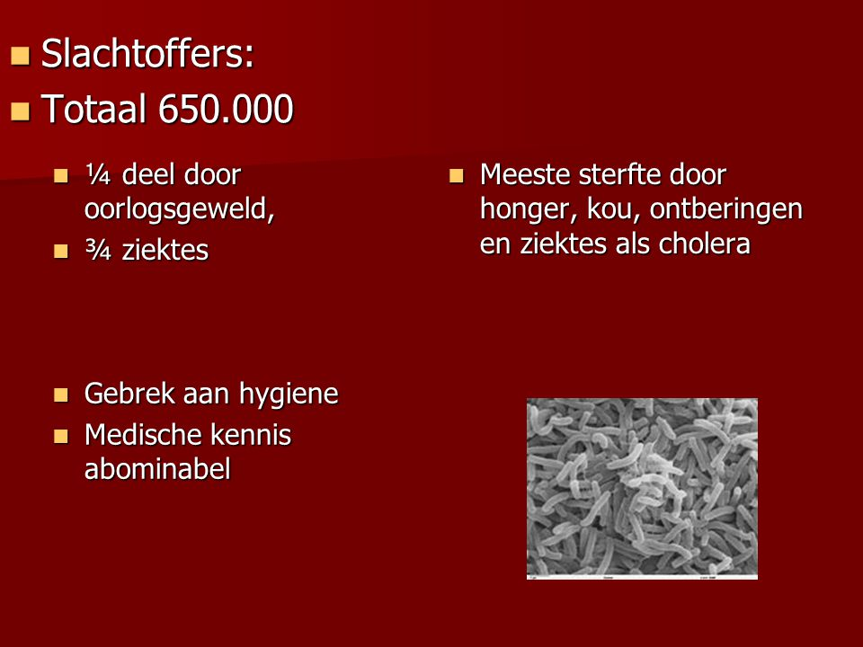 Slachtoffers: Totaal 650.000 ¼ deel door oorlogsgeweld, ¾ ziektes