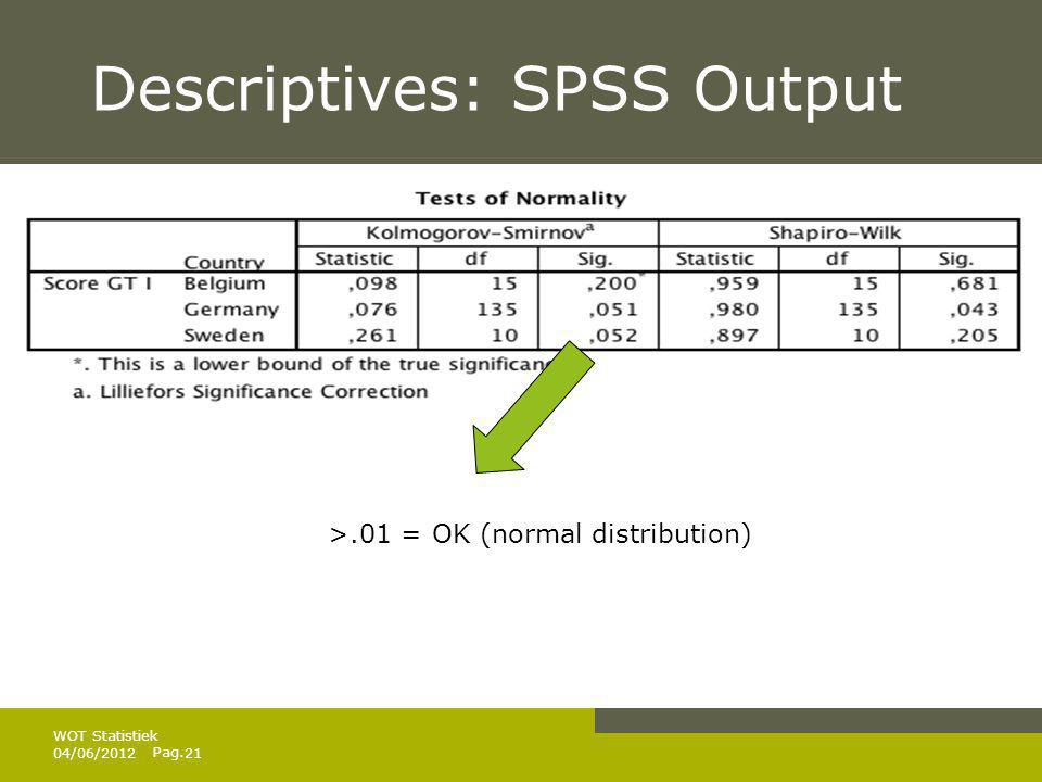 Descriptives: SPSS Output