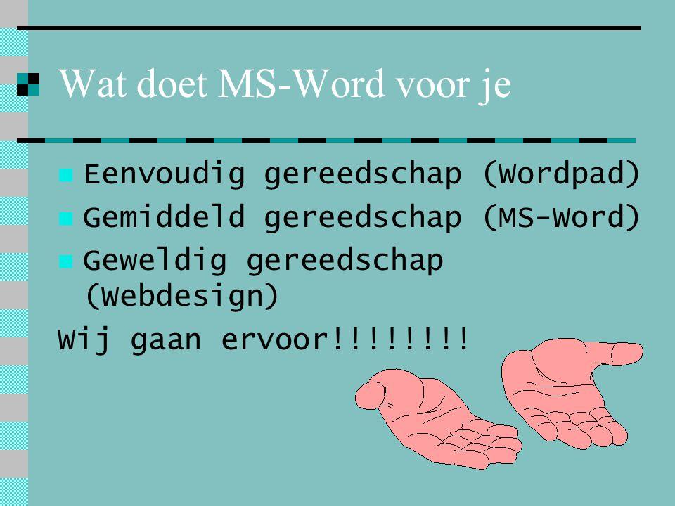 Wat doet MS-Word voor je