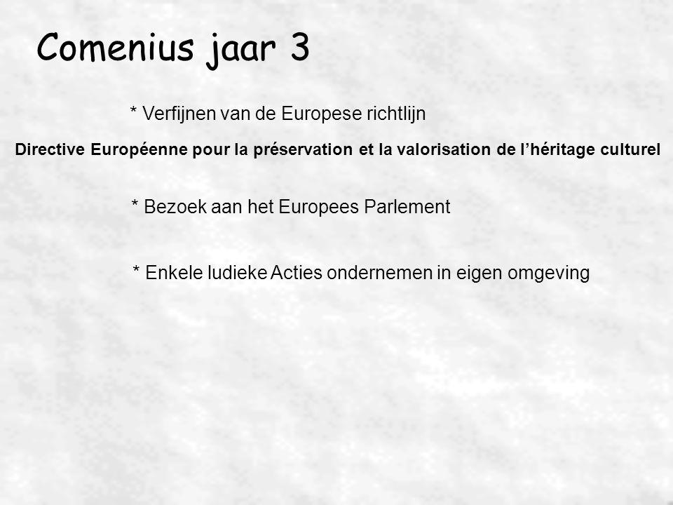 Comenius jaar 3 * Verfijnen van de Europese richtlijn