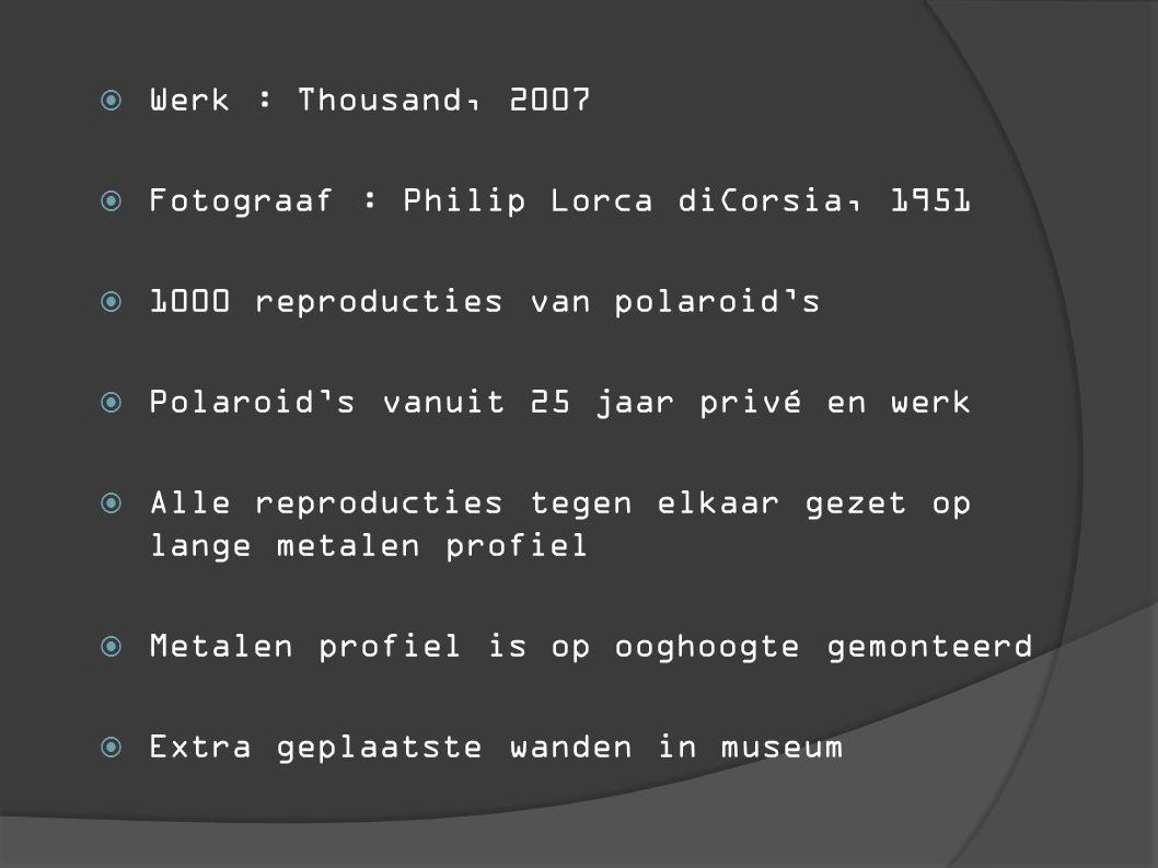 Werk : Thousand, 2007 Fotograaf : Philip Lorca diCorsia, 1951. 1000 reproducties van polaroid's. Polaroid's vanuit 25 jaar privé en werk.