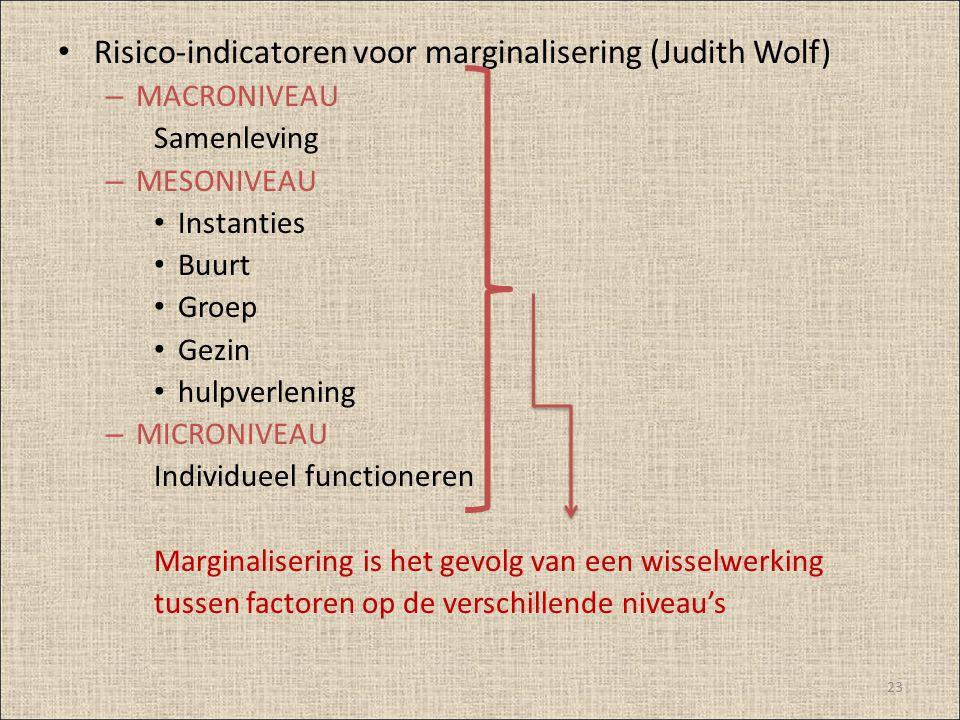 Risico-indicatoren voor marginalisering (Judith Wolf)