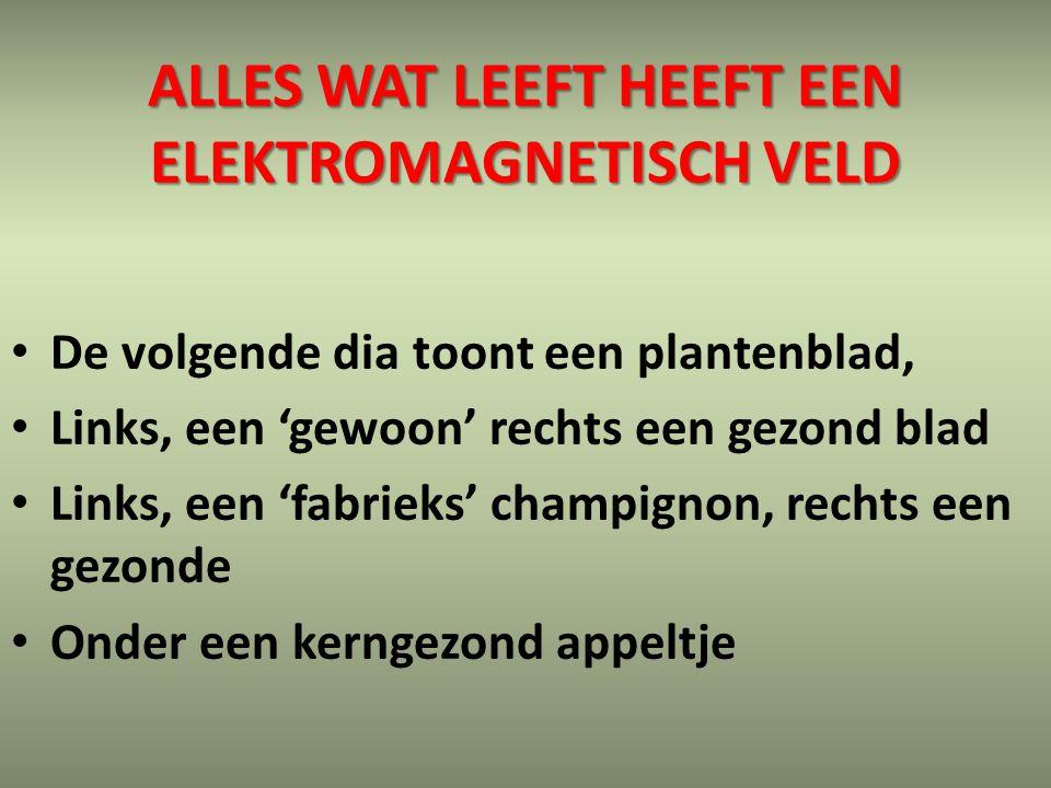 Alles wat leeft heeft een elektromagnetisch veld