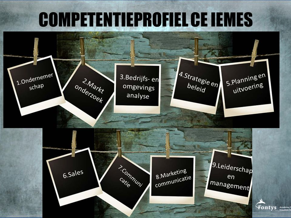 COMPETENTIEPROFIEL CE IEMES